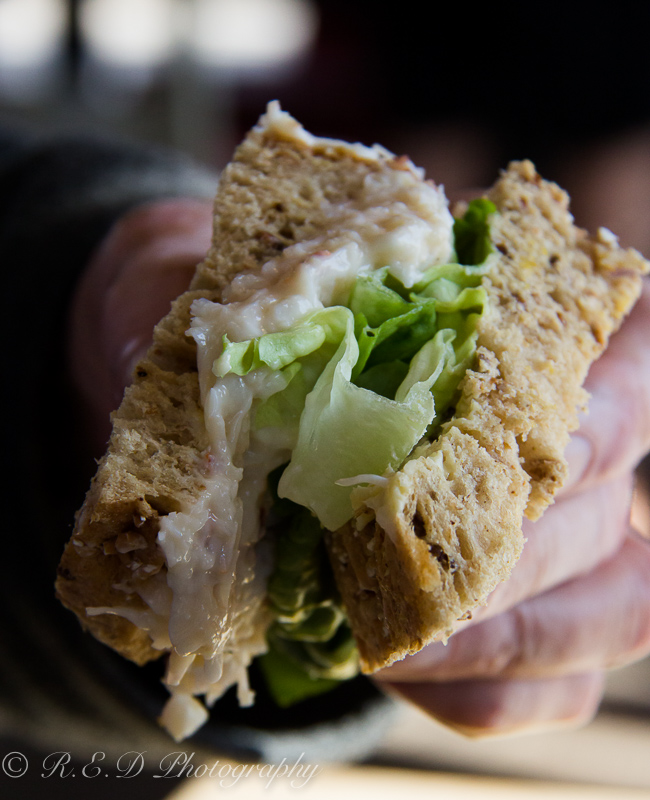 south beach bar and grill food review tenby crab sandwich