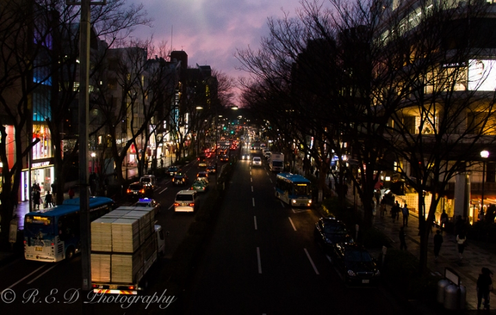 Visual Diary: I Miss Tokyo#5