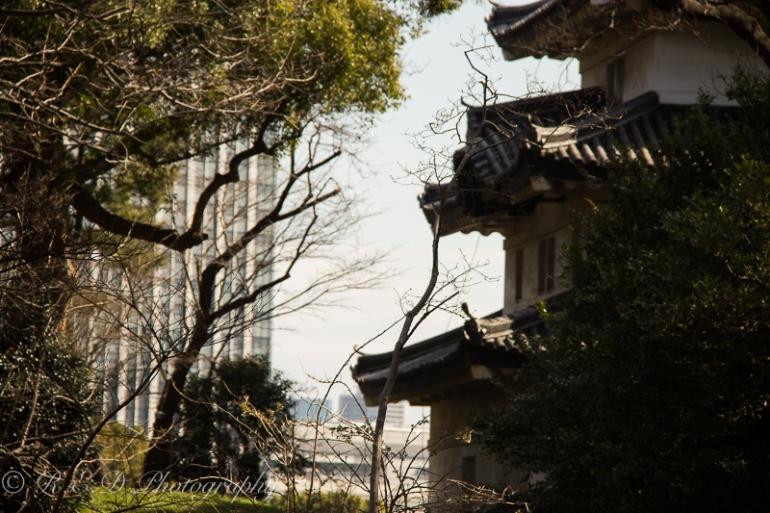 rhidixonblog-lifestyle-blogger-tokyo-167