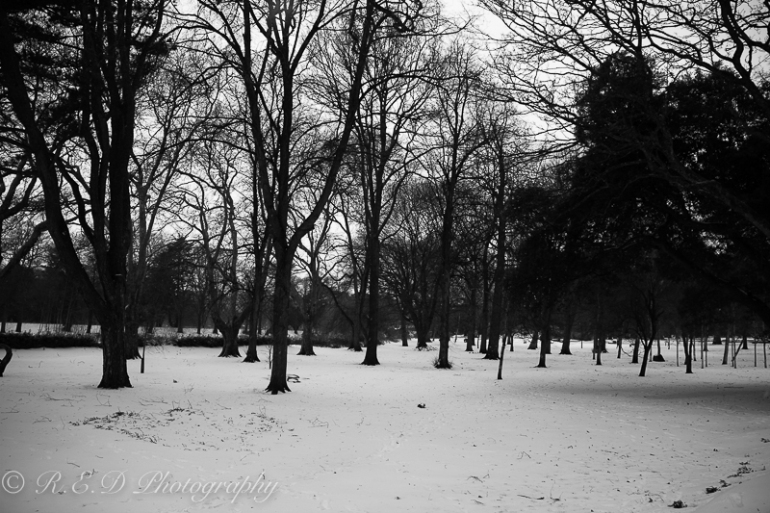 rhidixonblog-lifestyle-blogger-snow-day-7